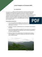 347360191-Areas-Naturales-Protegidas-en-El-Salvador.docx