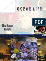 Vita Oceano