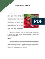 Proyecto Del Rocoto