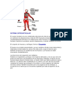 SISTEMA OSTEOARTICULAR.doc