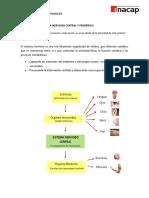 Funciones SNC y Periferico