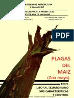 Plagas de Maiz (Paliz) Comunicaicón Técnica Sin Número