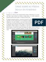INFORME SOBRE MI PÁGINA CREADA EN PINGENDO.pdf