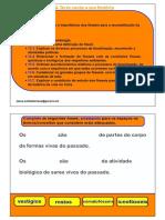 Exercícios Interativos PDF