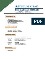 CURRICULO VTAE.docx 2015.docx