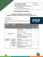 cronograma_actividades_sg_sst.docx