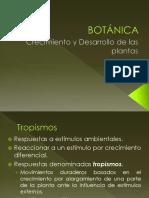 Crecimiento y Desarrollo de Las Plantas