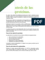 Biologia sintesis de las proteinas