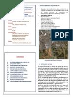 Proyecto Resumen Ejecutivo (1)
