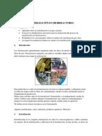 Esterilización en Biorreactores