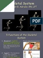 Skeletal System Powerpoint