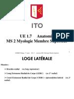 1a Ue 1.7 Anatomie Ms 2 Myo Av Bras 1 Guérin 1617 Support