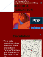 Blood Circulation Opt