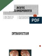 Acute Pyelonephritis Ppt