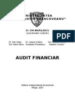 FINANCIAL AUDIT / AUDIT FINANCIAR - Ion Mihailescu (RO)