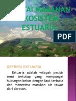 Rantai Makanan Ekosistem Estuaria PPT