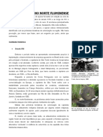 06_OAcucarNoNorteFluminense.pdf