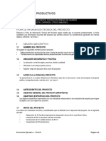 Guia Cman Proyecto Productivos 10.1