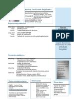 Curriculum Vitae Cronológico_MIC