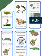 Triptico Reptiles