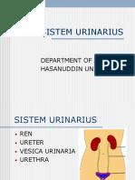 01 Anatomi Sistem Urologi