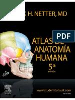 Atlas Anatomia Humana - Netter - 5 Edición (BM21).