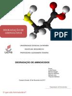 Degradação de Aminoácidos