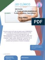 Caso Clinico Endometritis