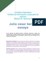 BernalOsnaya_JulioCesar_M20S3 Analisis y Propuesta de Solución