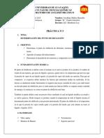 Informe 3- A. Organico