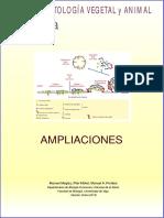 Atlas Celula Ampliaciones