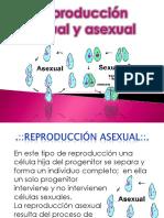 Reproduccion sexual y asexual