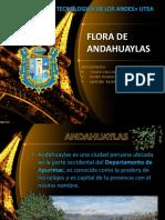 Flora de Andahuaylas