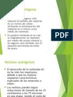 269626300-MOLINOS-AUTOGENOS.pdf
