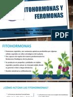 Fitohormonas y Feromonas