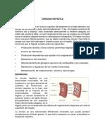 Enf.cirrosis Hepatica