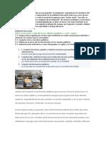 Trabajo Sociología_Burocracia