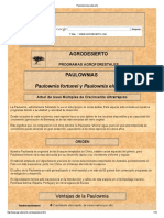 Paulownia Agrodesierto