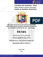 Viza_Copa_Felipe_Benesio.pdf