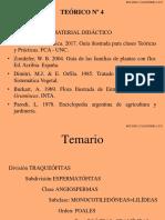 Teórico-4-2017