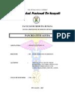 Pancreatits Cronica Arreglado