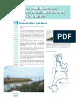 7 - Zones estuariennes.pdf