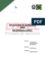 APLICACION-DE-NORMA-ISO-14001.pdf
