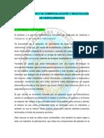 Resumen de Petroleo
