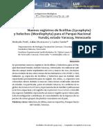 19135-21340-1-PB (1).pdf