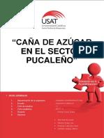 SEGUNDO-AVANCE (1).docx