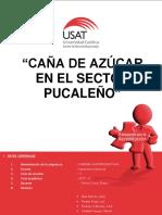 TALLER-4-DE-LA-CAÑA-DE-AZÚCAR-1.docx