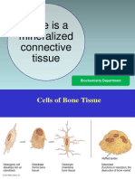 K17 - Biokimia Tulang