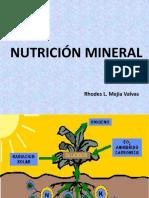 Nutricion Mineral Sem 05