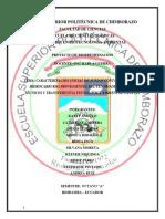 PROYECTO-CESTTA-FINALl.docx
